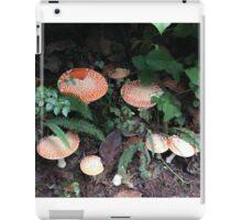 Happy Trails iPad Case/Skin