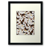 Kittens and Butterflies - a painted pattern Framed Print