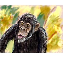 monkey bussiness Photographic Print