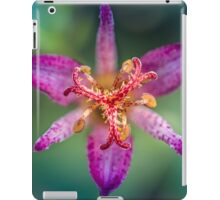 Ode to a toad (lily, silly!) iPad Case/Skin