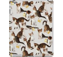 Kittens and Butterflies - a painted pattern iPad Case/Skin