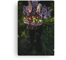 woman carrying a basket of apples Canvas Print