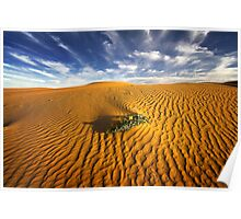 Dune in morning light - perry sand dunes Poster