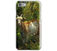 Brown and White Goat Beside a Bush iPhone Case/Skin