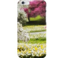 Divine Daffodils iPhone Case/Skin