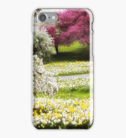 Divine Daffodils iPhone Case/Skin