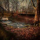 Autumn Splender by eddiej