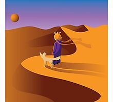 The little prince in the desert with fennec fox Photographic Print