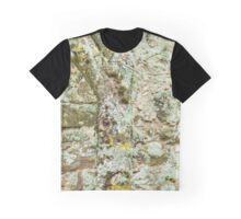 Masterly Disguise Graphic T-Shirt