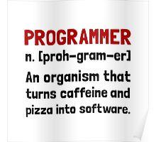 Programmer Definition Poster