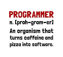 Programmer Definition Photographic Print