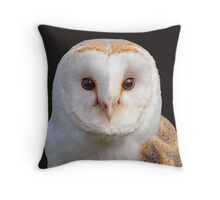 Barn Owl Tyto Alba Throw Pillow