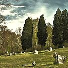""" 'THE CEMETERY' "", a Series,  #14, A Countryside Cemetery ""  by © Bob Hall"
