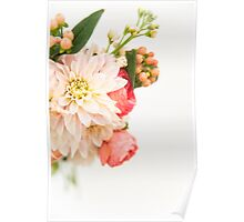 Pink Flowers on White Background Poster