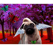 Chasing Butterflies Photographic Print