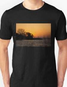 Greeting the Day in Flight  Unisex T-Shirt