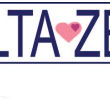 Delta Zeta Brandy Melville  Sticker