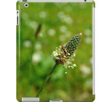 Tiny World iPad Case/Skin