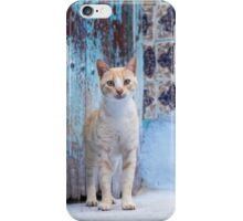 Cute stray cat. iPhone Case/Skin