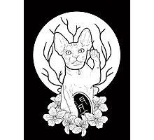 Maneki-neko Photographic Print