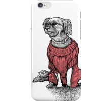 """Sassy"" (Small Dog In Red Sweater) iPhone Case/Skin"