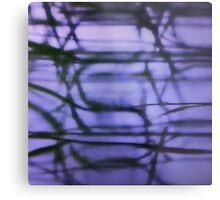 Serena 1 Metal Print