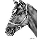 Affirmed (US) Thoroughbred Stallion by Patricia Howitt