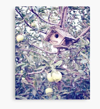 1 Apple Tree Ln. Canvas Print