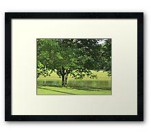 Green Is Beauty Framed Print