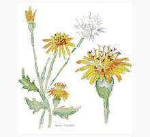 Dandelions (Perdeblom) - Botanical One Piece - Long Sleeve
