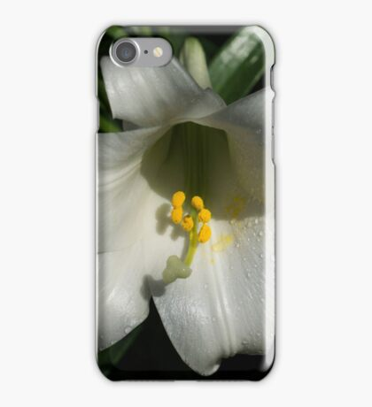 Emerging from the Darkness - Pure White Easter Lily iPhone Case/Skin