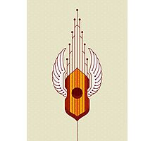 A Musical Instrument Photographic Print