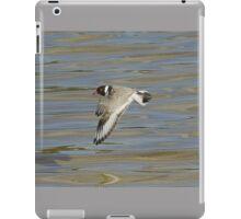 HOODED PLOVER IN FLIGHT iPad Case/Skin