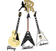 The Randy Rhoads Collection Photographic Print