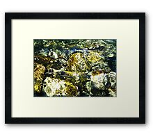Light and Water Photograph Framed Print