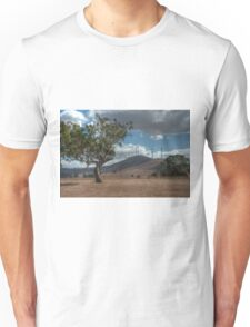 0662 Trees - old and new Unisex T-Shirt