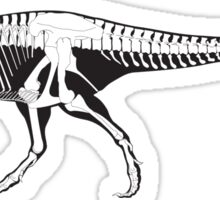 Dinosaur's skeleton  Sticker