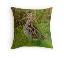 Snipe in the grass Throw Pillow