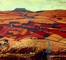 Slemish Mountain, Antrim by eolai
