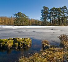 Finsthwaite Tarn - High Dam by eddiej