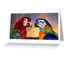 HYPER PARROTS / RED AND BLUE ARA Greeting Card