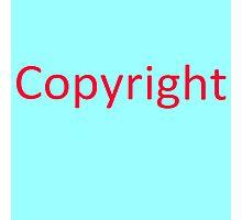 More copyright Photographic Print