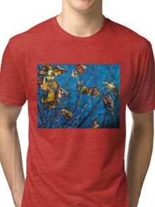 Golden Leaves III Tri-blend T-Shirt