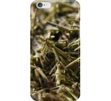 Sea Urchin Spines iPhone Case/Skin