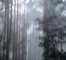 Misty forest Sticker