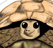 I Love my Tortoise cute cartoon Sticker