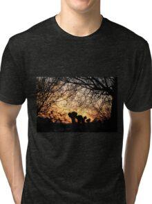 Enchanted sunset Tri-blend T-Shirt