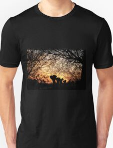 Enchanted sunset T-Shirt