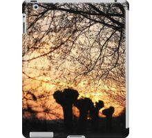Enchanted sunset iPad Case/Skin