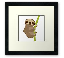 Dreaming sloth  Framed Print
